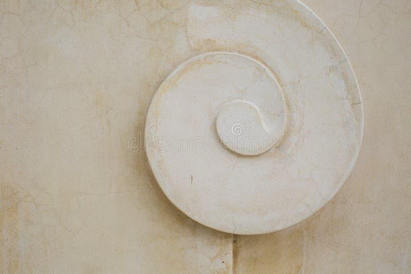 Структура тропического декоративного гипсолита, картины раковины стоковое изображение