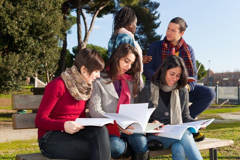 студенты колледжа стоковые изображения rf
