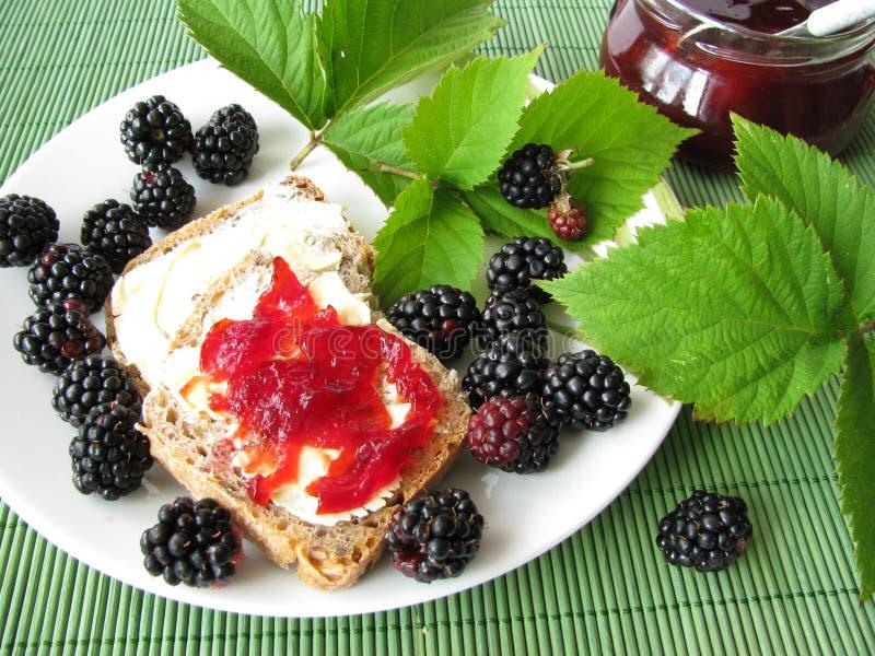 студень завтрака ежевики стоковые фото