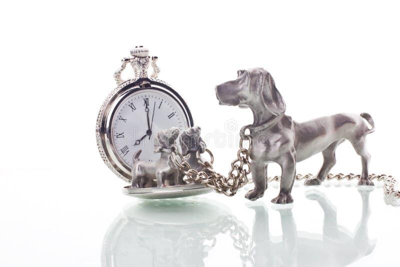 Студия собаки часов металла стоковое изображение