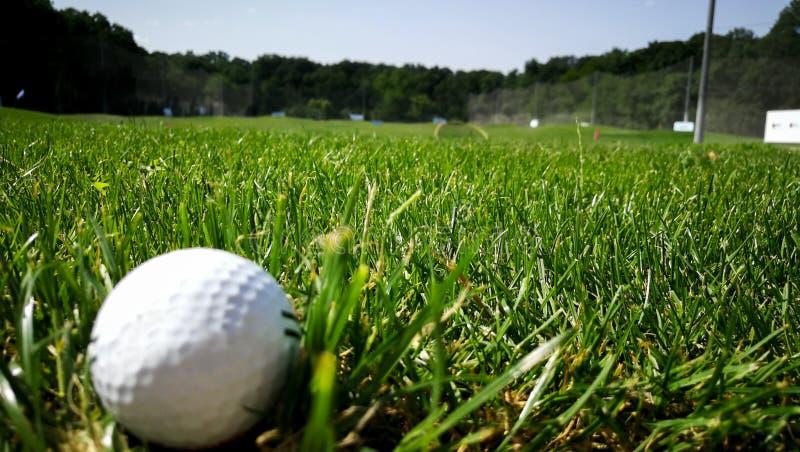 студия съемки травы гольфа шарика стоковое изображение rf