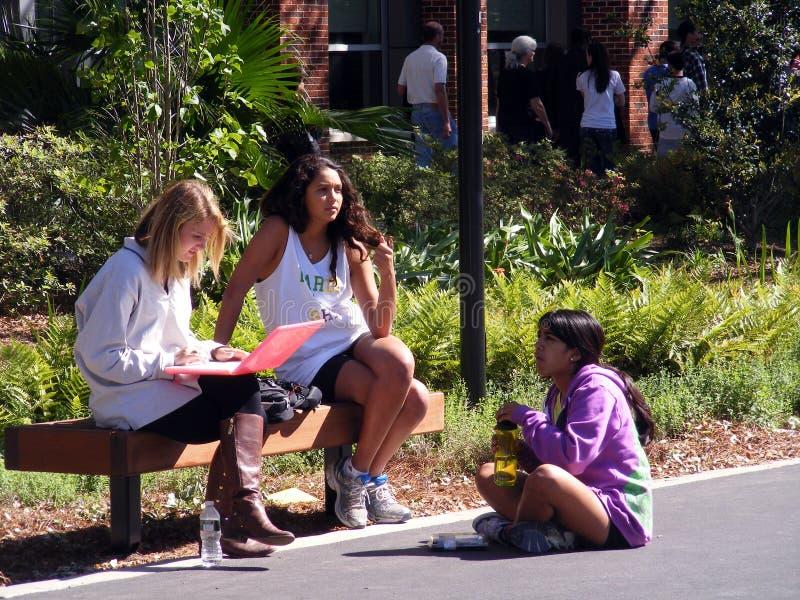 Студенты Люд-коллежа на кампусе стоковые изображения rf