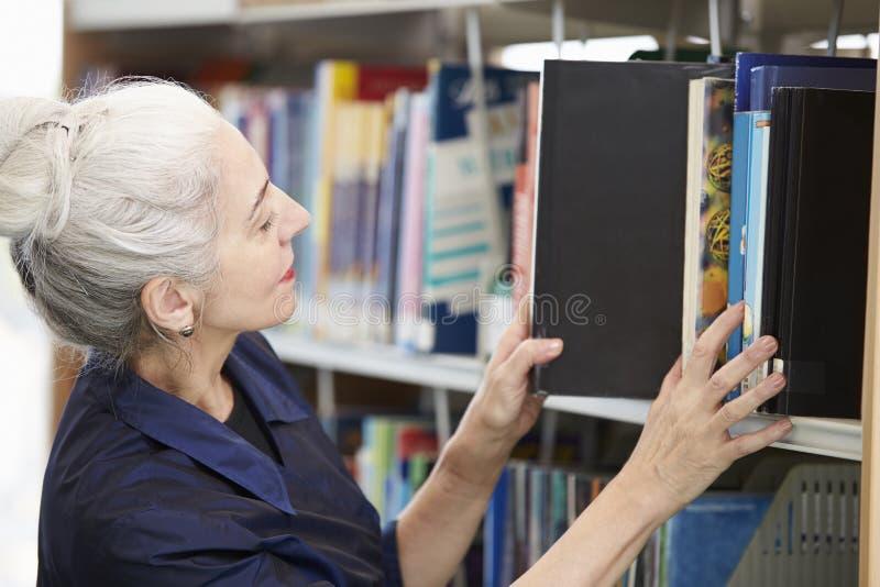 Студент женщины зрелый изучая в библиотеке стоковое изображение