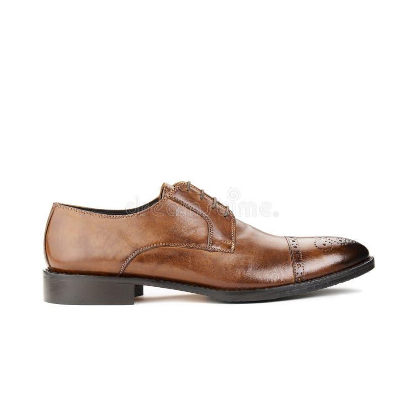 Студия снятая классического мужского ботинка стоковые фотографии rf