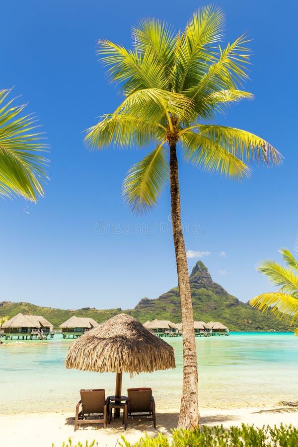 Download 2 стуль Sunlounger под покрыванным соломой парасолем на песке приставают W к берегу Стоковое Фото - изображение насчитывающей bluets, полинезия: 81811424