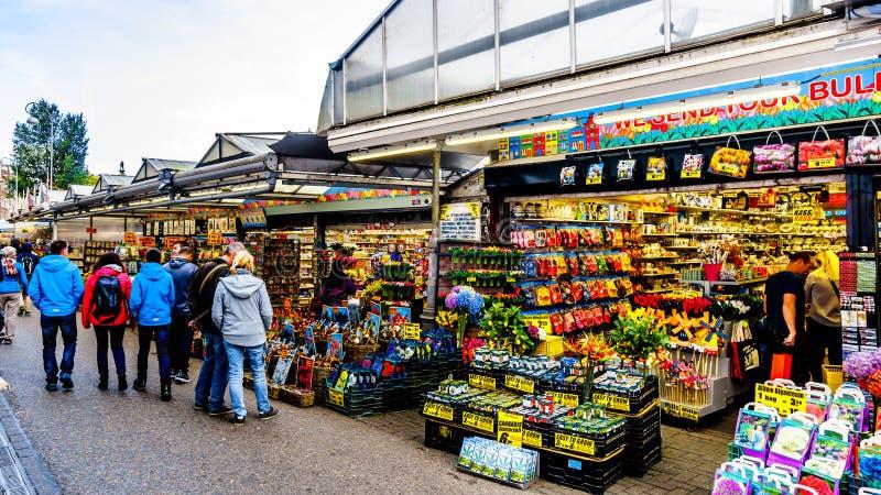 Сувенирные магазины в центре Амстердама, Голландии стоковое фото rf