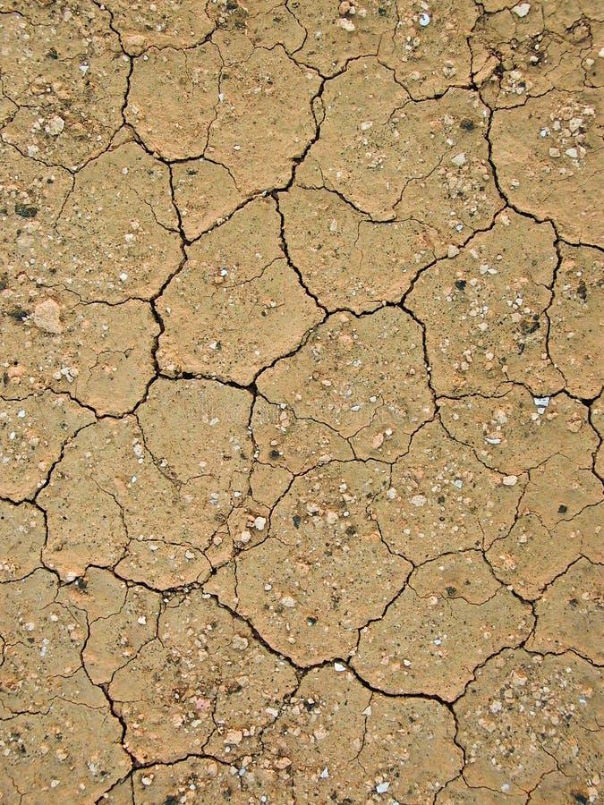 суглинок земли детали сухой стоковые изображения rf