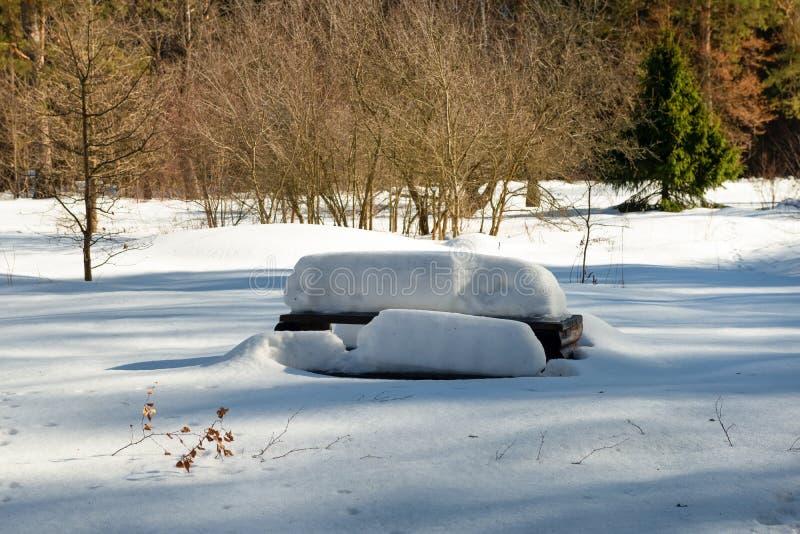 Суд в парке зимы покрытом со снегом стоковая фотография rf