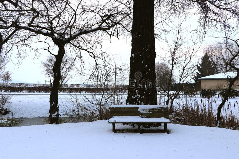 Суд в парке со снегом в зиме стоковое фото rf