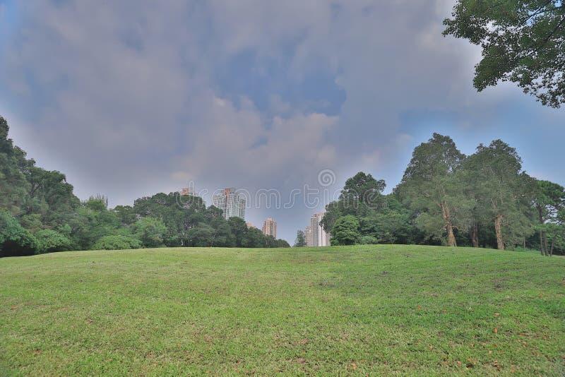 суд гольфа травы фокуса и большая нерезкость города стоковое изображение rf