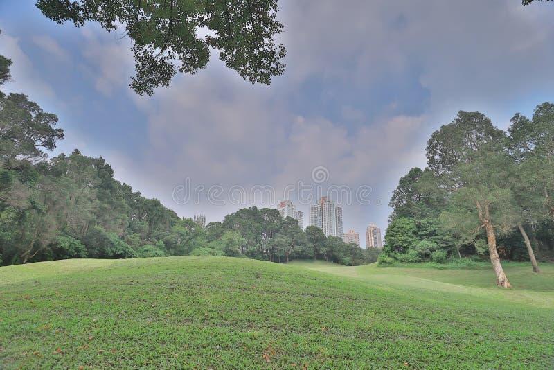 суд гольфа травы фокуса и большая нерезкость города стоковое фото rf