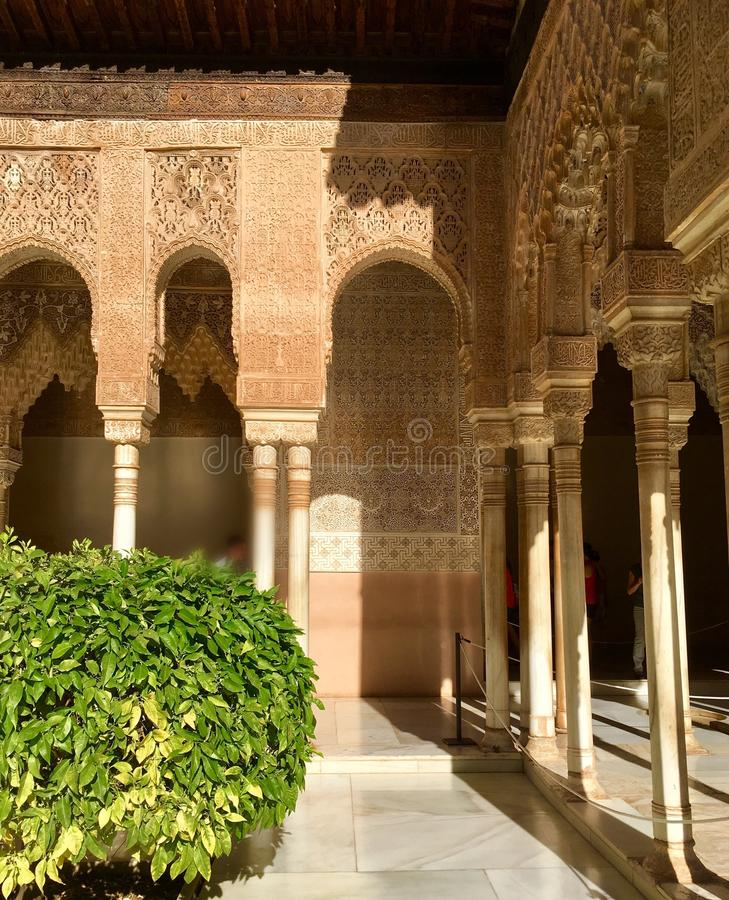 Суд дворца Альгамбра львов стоковое фото