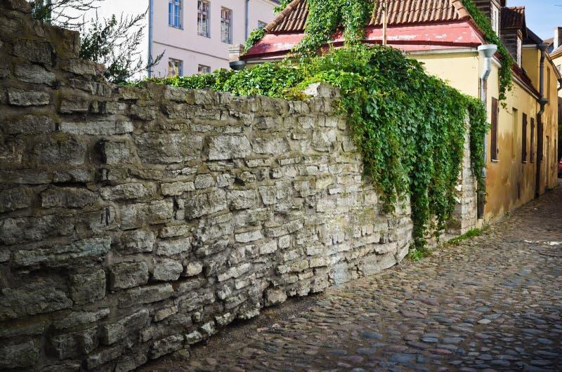 Сужайте улицу в Таллине Стоковые Изображения RF