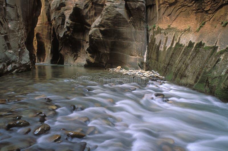 суживает virgin реки стоковые фото