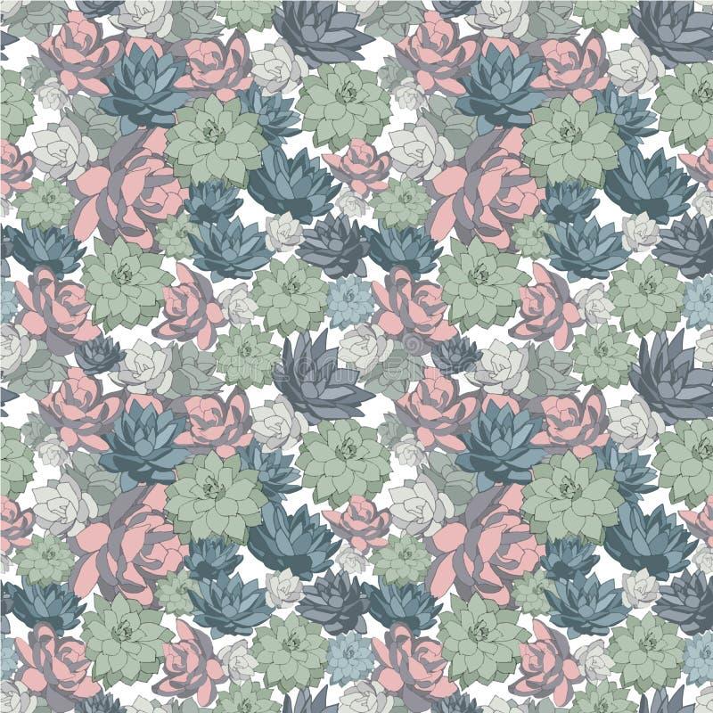 Суккулентный набор безшовных картин вектора в пастельных цветах иллюстрация штока