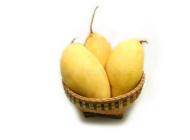 Сулой манго стоковая фотография