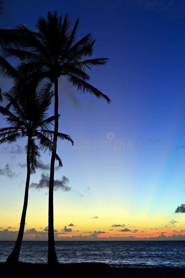 Сумерки на тропической сцене пляжа стоковые фото