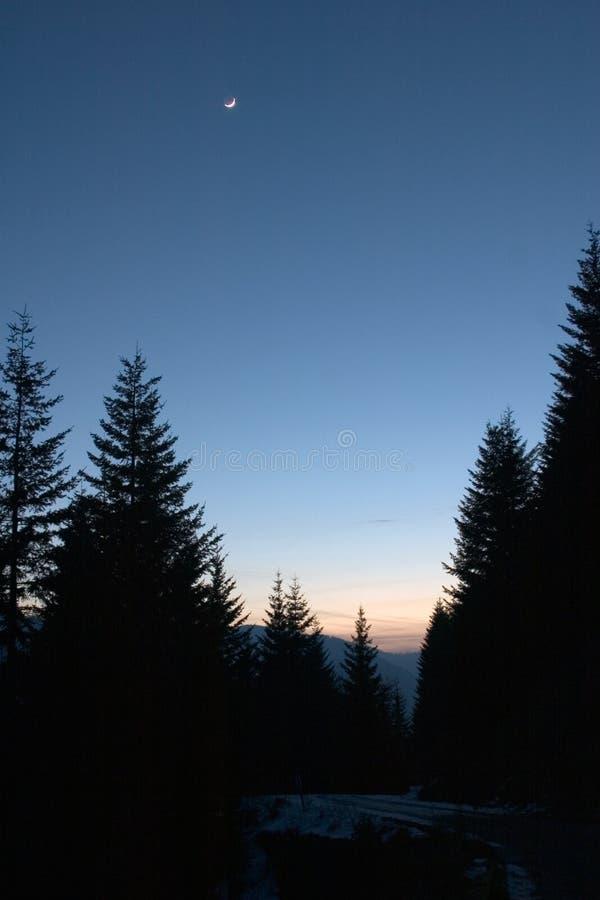 сумерк горы стоковое изображение rf