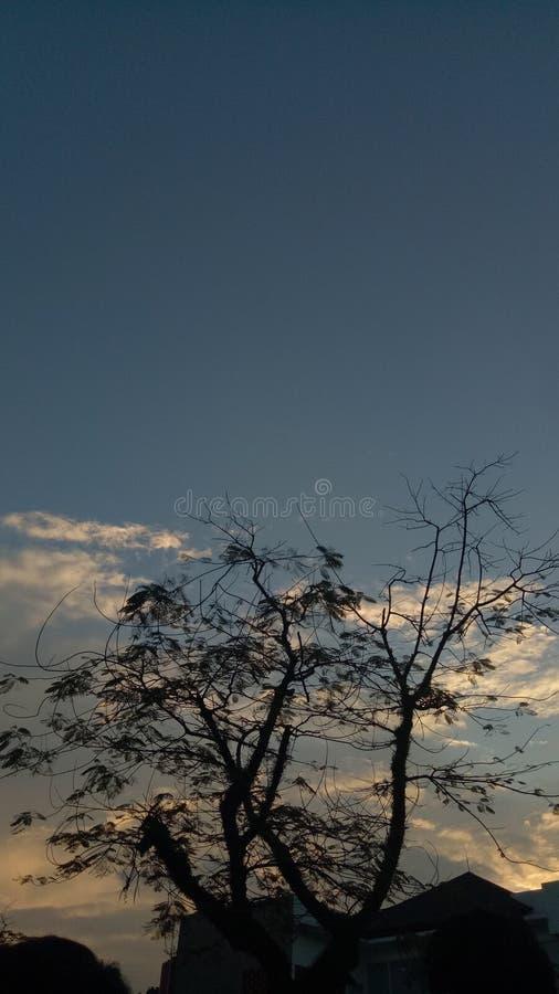 сумрак пашет рассвет стоковое фото
