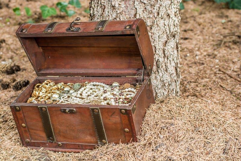 Сундук с сокровищами в древесинах на том основании рядом с деревом стоковые фото