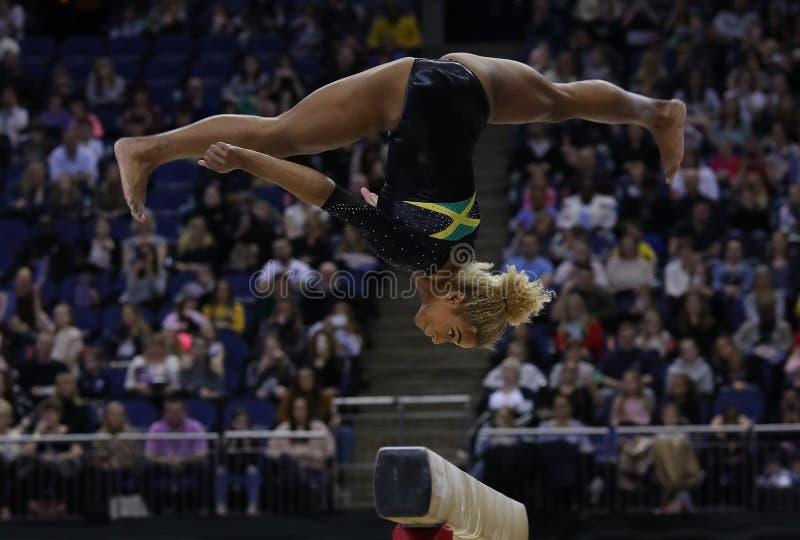 Суперзвезды гимнастики стоковая фотография