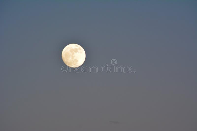 Супер луна на заходе солнца до затмения луны крови стоковая фотография rf