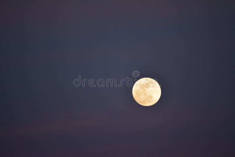 Супер луна на заходе солнца до затмения луны крови стоковые фотографии rf