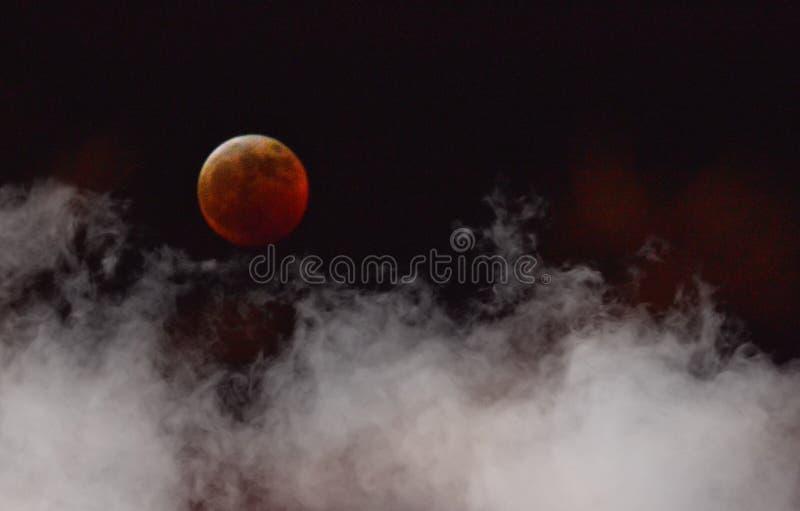 Супер лунное затмение луны крови волка стоковые фото