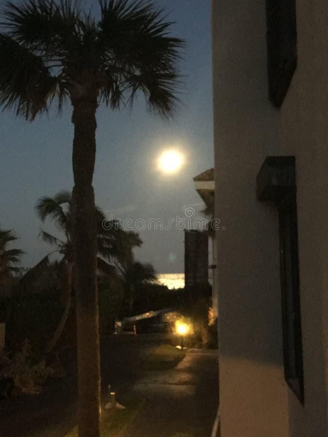 Супер побережье сокровища луны, FL стоковое фото rf