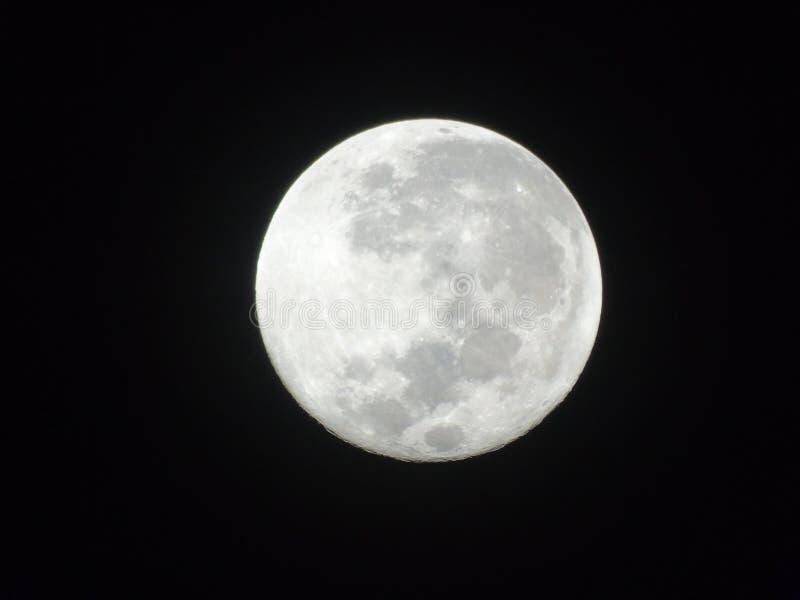 Супер фото луны стоковая фотография rf