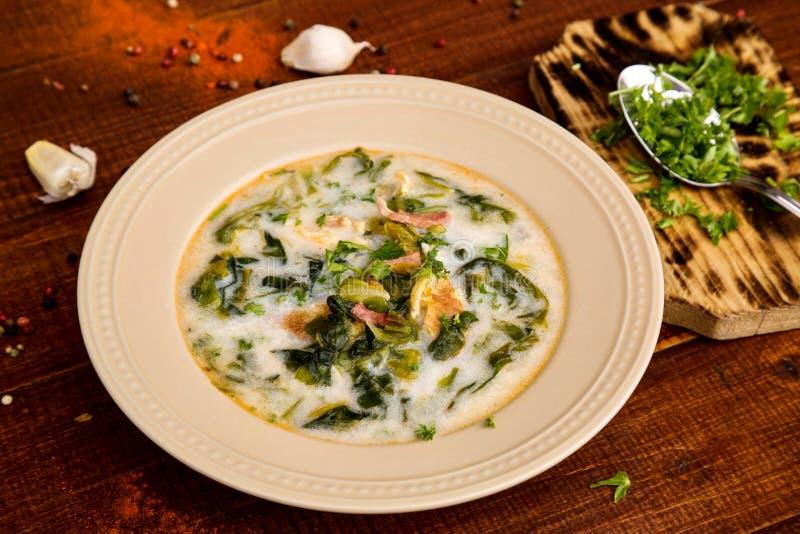 Суп весны с зеленым салатом, ветчиной и omlette стоковые изображения