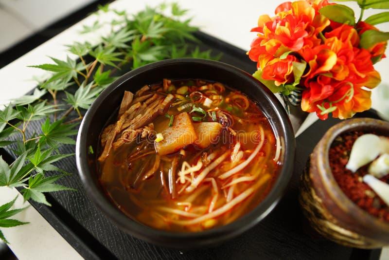 Суп говядины Hongseong, начатый через академичные обмены и Sp стоковая фотография rf