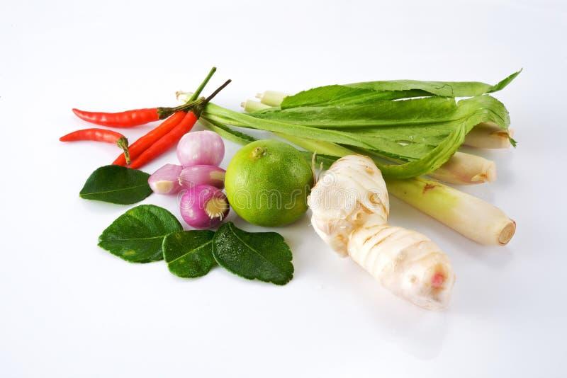 суп ингридиентов тайский стоковые изображения rf