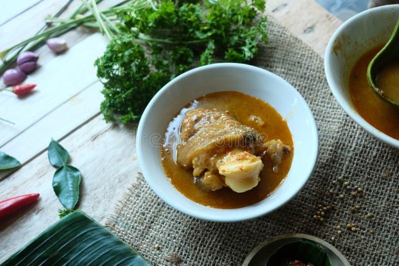 Суп и овощи сулоя стоковая фотография rf
