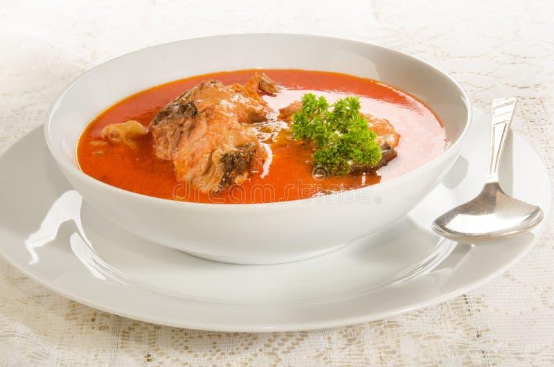 Суп карпа с сметаной в белой плите супа стоковые фотографии rf