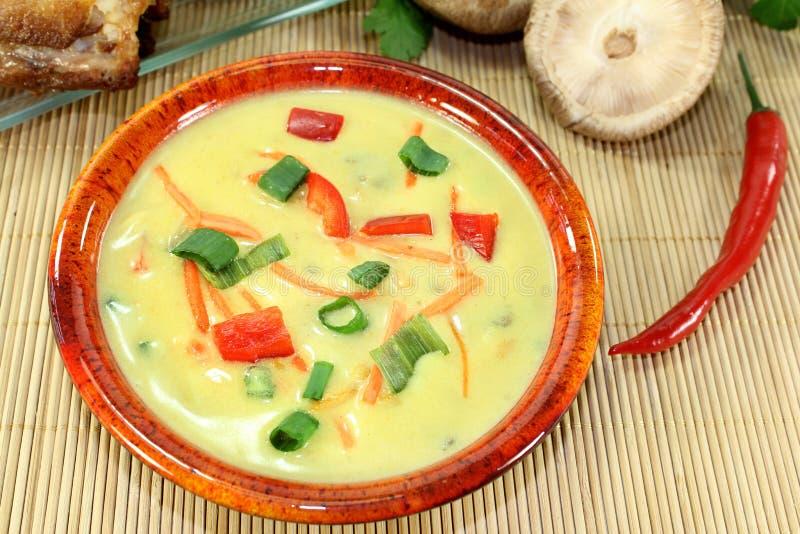 Суп карри стоковая фотография