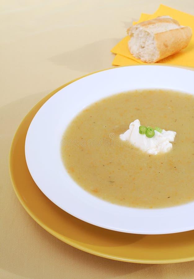 суп картошки лук-порея стоковая фотография