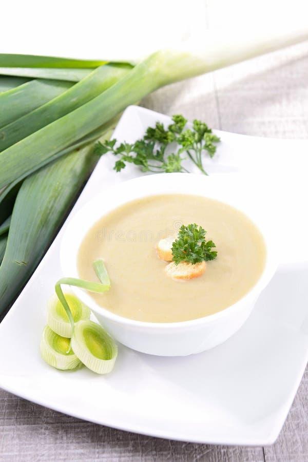 Суп лук-порея стоковое фото