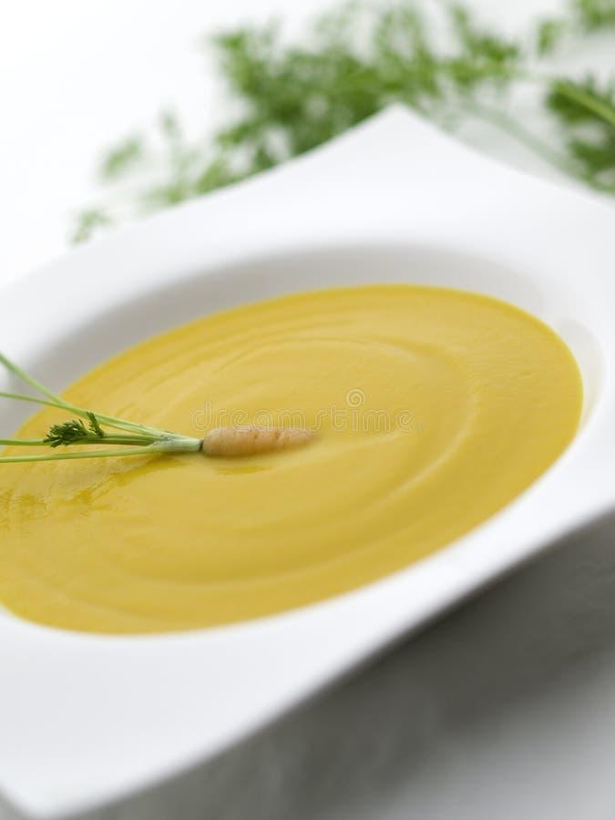 суп моркови отмелый стоковое изображение
