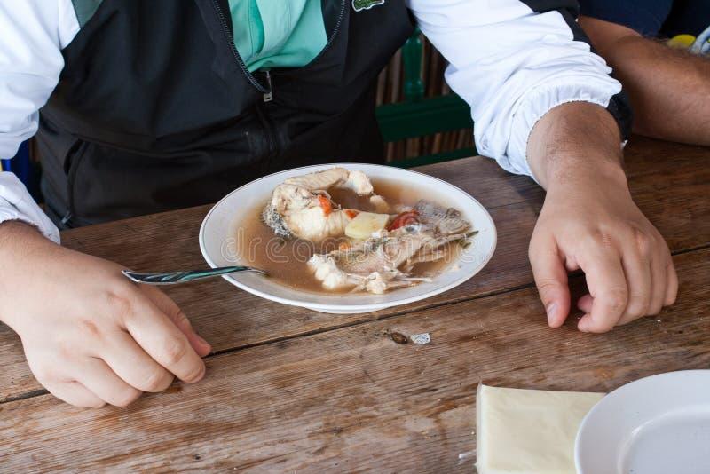 Суп рыб - путь перепада Дуна стоковая фотография