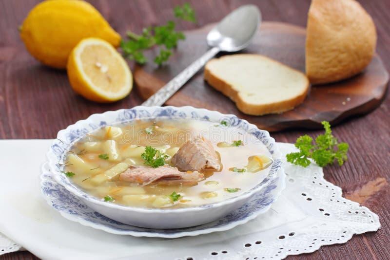 Суп рыб с семгами стоковая фотография