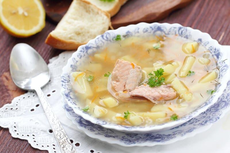 Суп рыб с семгами стоковое фото