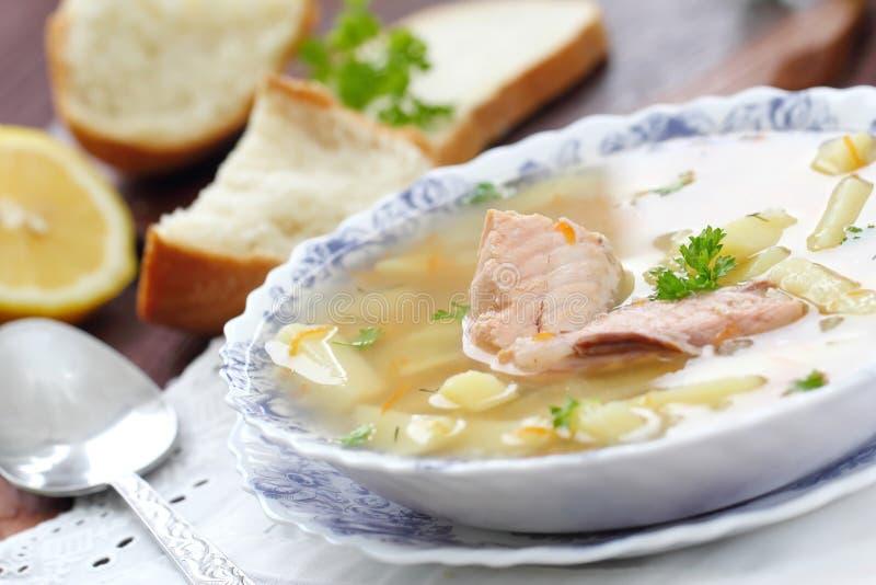 Суп рыб с семгами стоковые фото