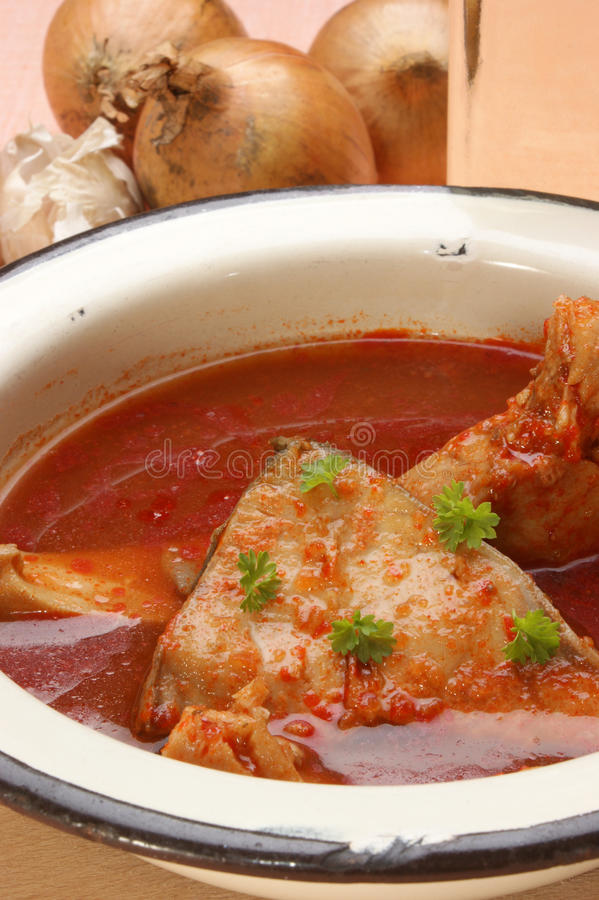 суп рыб эмали вырезуба шара стоковое фото