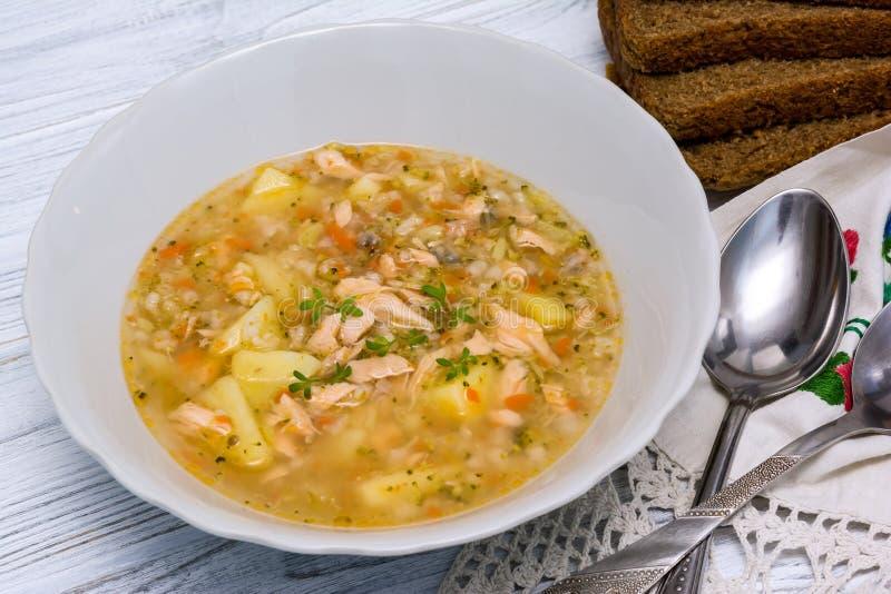 Суп рыб salmon с broccoly стоковое изображение