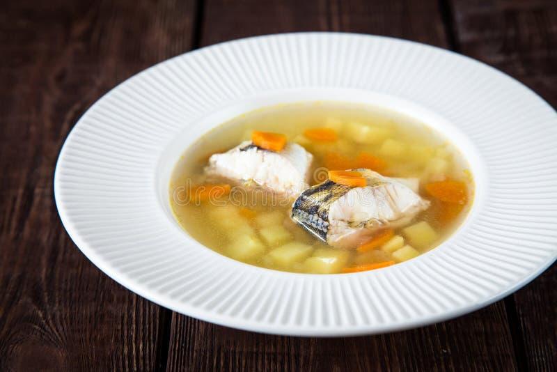 Суп свежих рыб с окунем и овощами щуки в белой плите стоковое изображение rf