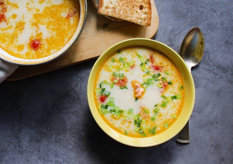 Суп семг со сливками и овощи в желтой плите стоковая фотография