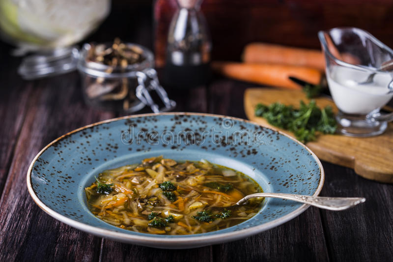 Суп с капустой и высушенными грибами стоковые изображения