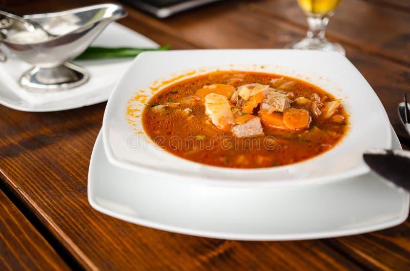 Суп телятины стоковое изображение