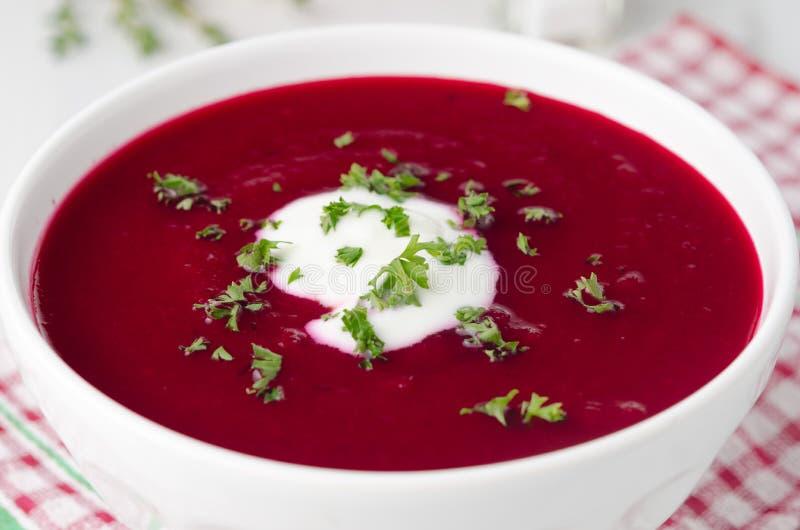 Суп томата с крупным планом бураков горизонтальным стоковые изображения